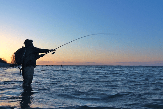 The best ultralight spinning fishing rods : Advice & buying guide