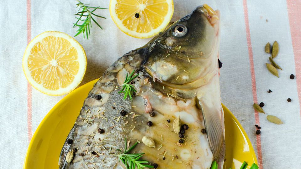 Best tasting freshwater fish - Fish Lovers Guide