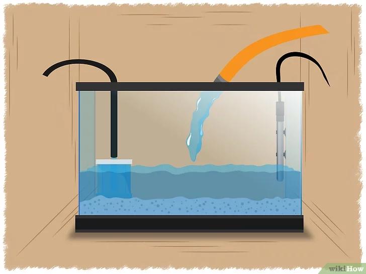 water in fish tank