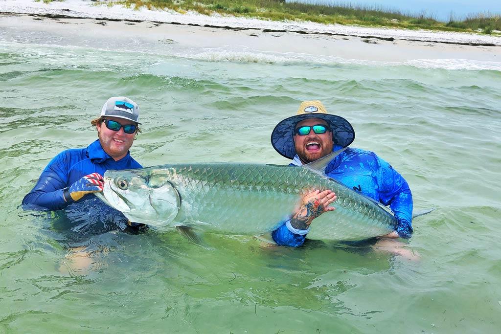 tarpon fish catch